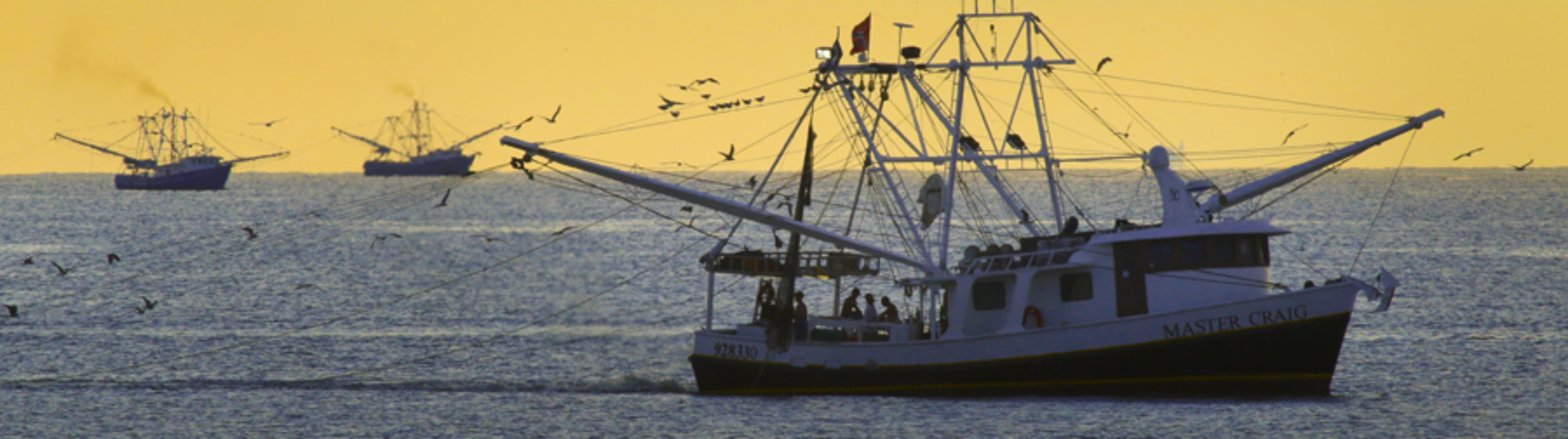 Gulf Seafood Foundation
